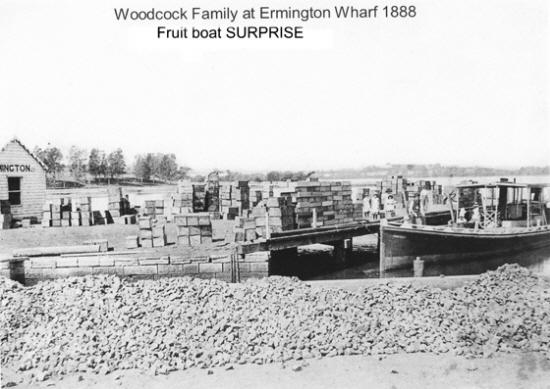 Woodcock family